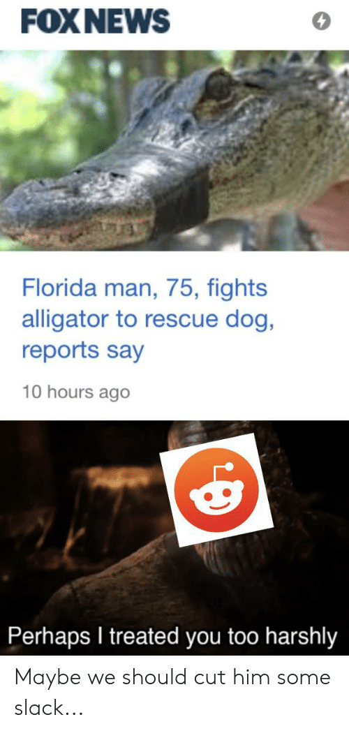 Florida Man, Alligator, and Florida: FOXNEWS  Florida man, 75, fights  alligator to rescue dog,  reports say  10 hours ago  Perhaps I treated you too harshly Maybe we should cut him some slack...