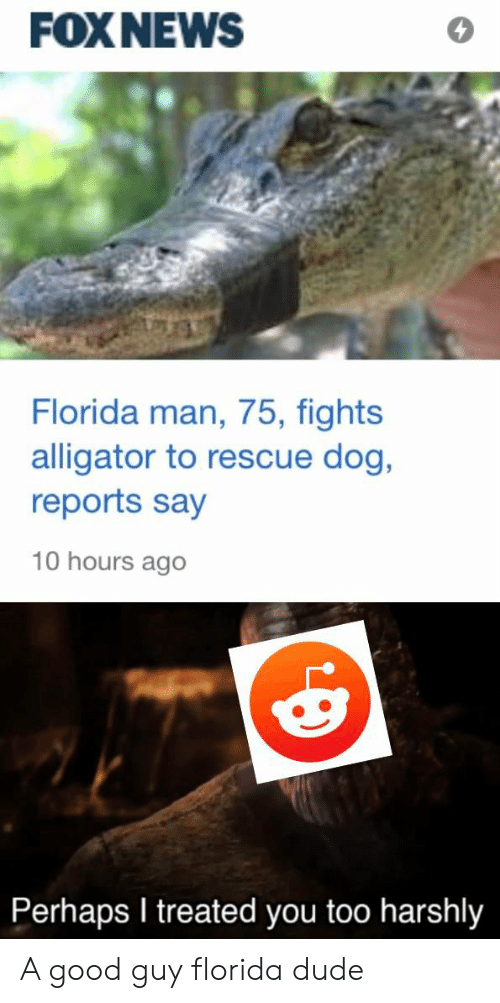 Dude, Florida Man, and Reddit: FOXNEWS  Florida man, 75, fights  alligator to rescue dog,  reports say  10 hours ago  Perhaps I treated you too harshly A good guy florida dude