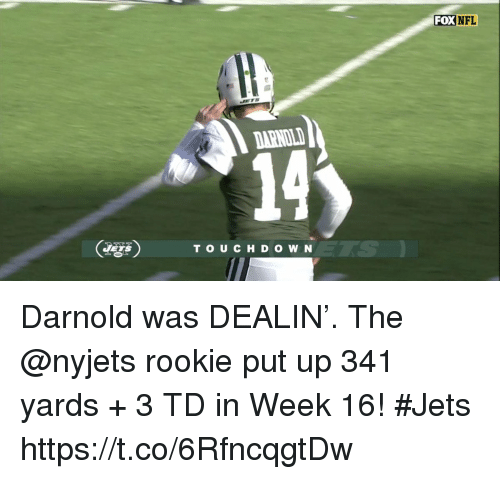 Memes, Jets, and 🤖: FOXNFL  DARNOL  14  TS  TO UCHD O W N Darnold was DEALIN'.   The @nyjets rookie put up 341 yards + 3 TD in Week 16! #Jets https://t.co/6RfncqgtDw