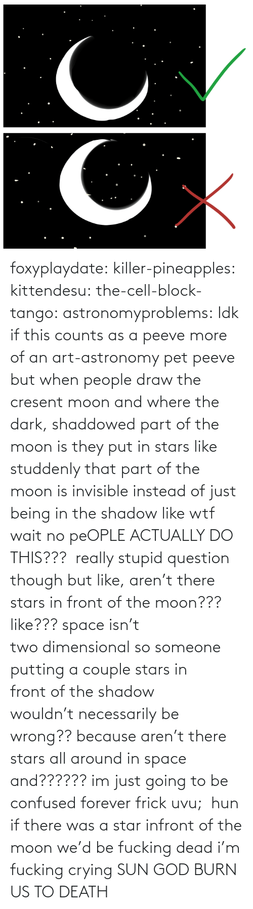 Confused, Crying, and Frick: foxyplaydate: killer-pineapples:  kittendesu:  the-cell-block-tango:  astronomyproblems:  Idk if this counts as a peeve more of an art-astronomy pet peeve but when people draw the cresent moon and where the dark, shaddowed part of the moon is they put in stars like studdenly that part of the moon is invisible instead of just being in the shadow like wtf  wait no peOPLE ACTUALLY DO THIS???   really stupid question though but like, aren't there stars in front of the moon??? like??? space isn't two dimensional so someone putting a couple stars in front of the shadow wouldn't necessarily be wrong?? because aren't there stars all around in space and?????? im just going to be confused forever frick uvu;   hun if there was a star infront of the moon we'd be fucking dead  i'm fucking crying    SUN GOD BURN US TO DEATH