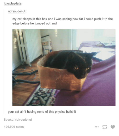 Physics, Jumped, and How: foxyplaydate  notyoudonut  my cat sleeps in this box and i was seeing how far i could push it to the  edge before he jumped out and  your cat aint having none of this physics bulishi  Source: notyoudonut  199,909 notes