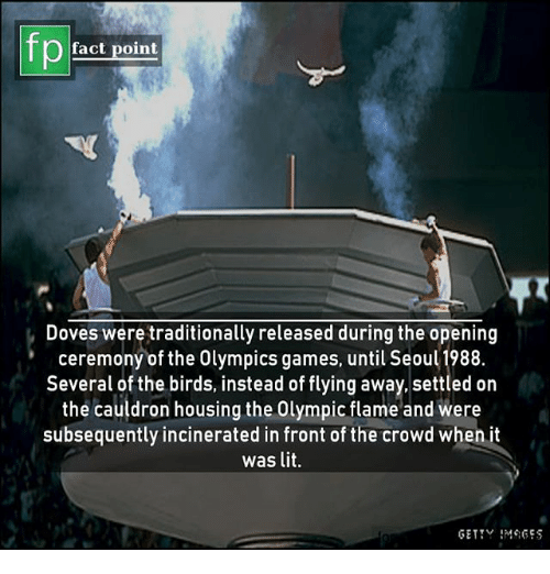 Lit, Memes, and Birds: fp  fact point  Doves were traditionally released during the opening  ceremony of the Olympics games, until Seoul 1988.  Several of the birds, instead of flying away,.settled on  the cauldron housing the Olympic flame and were  subsequently incinerated in front of the crowd when it  was lit.