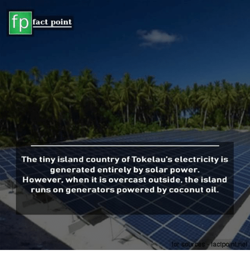Memes, Coconut Oil, and Power: fp  fact point  The tiny island country of Tokelau's electricity is  generated entirely by solar power.  However. when it is overcast outside, the island  runs on generators powered by coconut oil  rces factpoint