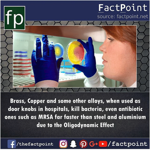 Memes, 🤖, and Mrsa: fp  FactPoint  source: factpoint.net  Brass, Copper and some other alloys, when used as  door knobs in hospitals, kill bacteria, even antibiotic  ones such as MRSA far faster than steel and aluminium  due to the Oligodynamic Effect