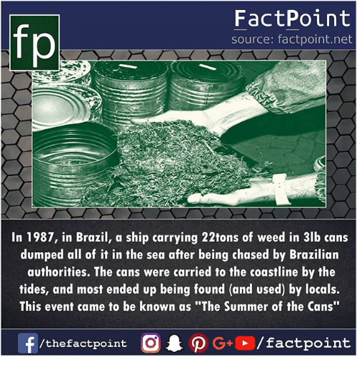 "Memes, Weed, and Summer: fp  FactPoint  source: factpoint.net  In 1987, in Brazil, a ship carrying 22tons of weed in 3lb cans  dumped all of it in the sea after being chased by Brazilian  authorities. The cans were carried to the coastline by the  tides, and most ended up being found (and used) by locals.  This event came to be known as ""The Summer of the Cans"""