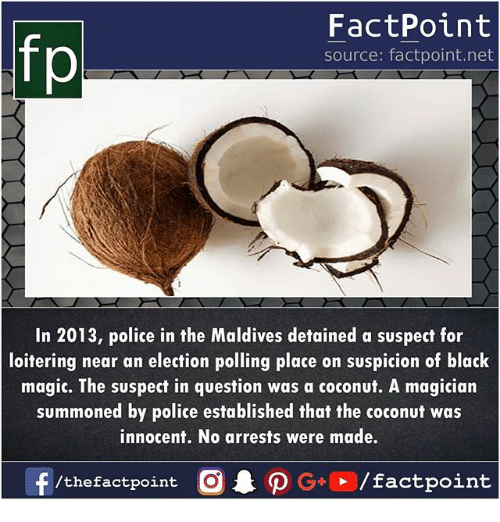 Memes, Police, and Black: fp  FactPoint  source: factpoint.net  In 2013, police in the Maldives detained a suspect for  loitering near an election polling place on suspicion of black  magic. The suspect in question was a coconut. A magician  summoned by police established that the coconut was  innocent. No arrests were made.