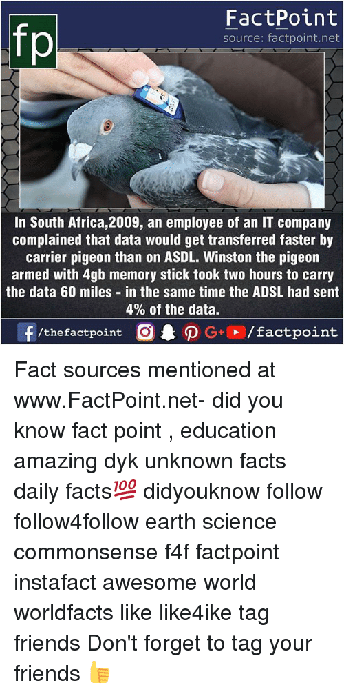 Africa, Facts, and Friends: fp  FactPoint  source: factpoint.net  In South Africa, 2009, an employee of an IT company  complained that data would get transferred faster by  carrier pigeon than on ASDL. Winston the pigeon  armed with 4gb memory stick took two hours to carry  the data 60 miles in the same time the ADSL had sent  4% of the data. Fact sources mentioned at www.FactPoint.net- did you know fact point , education amazing dyk unknown facts daily facts💯 didyouknow follow follow4follow earth science commonsense f4f factpoint instafact awesome world worldfacts like like4ike tag friends Don't forget to tag your friends 👍
