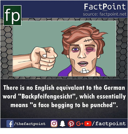 "Memes, Word, and English: fp  FactPoint  source: factpoint.net  There is no English equivalent to the German  word "" Backpfeifengesicht"", which essentially  means ""a face begging to be punched"".  /thefactpoint C"