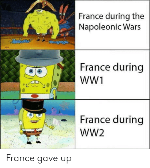 France, Ww2, and Wars: France during the  Napoleonic Wars  France during  France during  WW2 France gave up