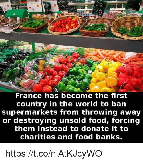 France Has Become the First Country in the World to Ban