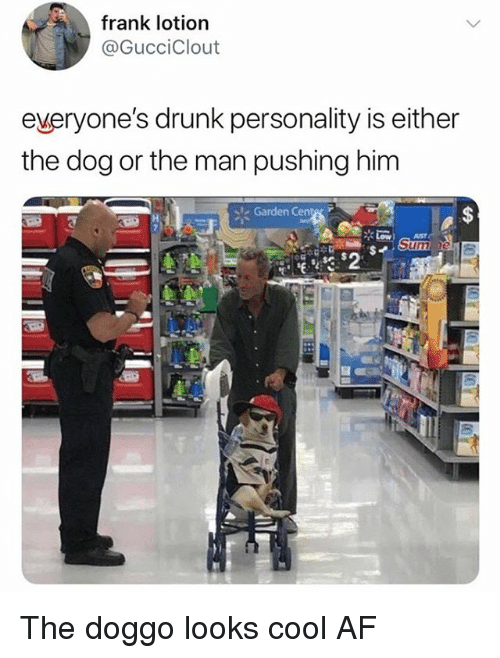 Af, Drunk, and Memes: frank lotion  @GucciClout  everyone's drunk personality is either  the dog or the man pushing him  Garden Cente The doggo looks cool AF