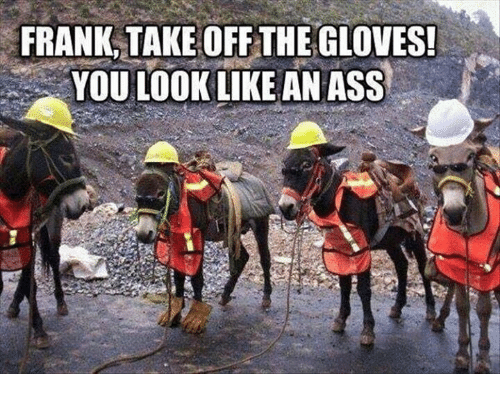 Memes, 🤖, and Franks: FRANK,TAKE OFF:THE GLOVES!  YOU LOOK LIKE AN ASS  꿇  pe