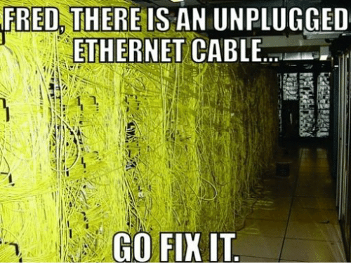 Cable, Ethernet, and Fred: FRED, THERE IS AN UNPLUGGED  ETHERNET CABLE.  GO FIK IT