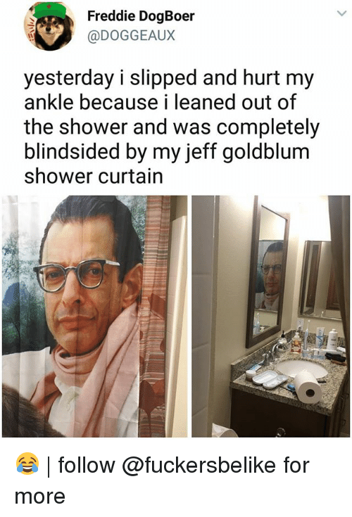 Memes Shower And Jeff Goldblum Freddie DogBoer DOGGEAUX Yesterday I Slipped