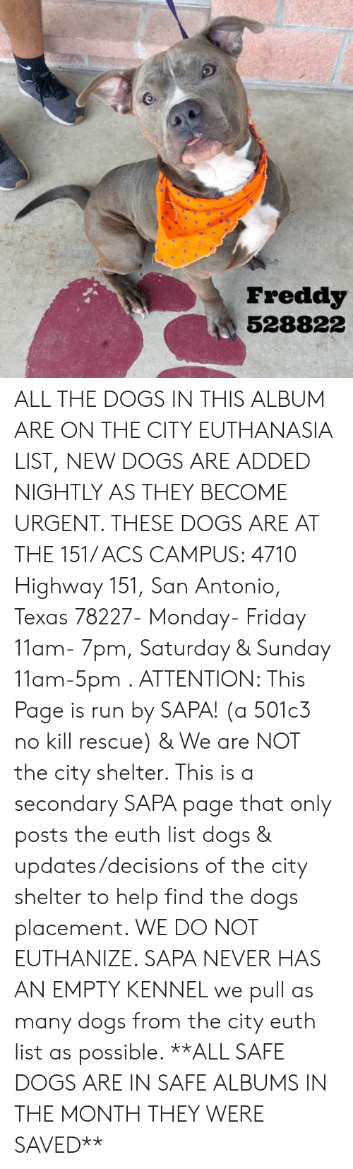 Dogs, Friday, and Memes: Freddy  528822 ALL THE DOGS IN THIS ALBUM ARE ON THE CITY EUTHANASIA LIST, NEW DOGS ARE ADDED NIGHTLY AS THEY BECOME URGENT.  THESE DOGS ARE AT THE 151/ ACS CAMPUS: 4710 Highway 151, San Antonio, Texas 78227- Monday- Friday 11am- 7pm, Saturday & Sunday 11am-5pm  .                                                                                                                                                                                                                                                     ATTENTION: This Page is run by SAPA! (a 501c3 no kill rescue) & We are NOT the city shelter. This is a secondary SAPA page that only posts the euth list dogs & updates/decisions of the city shelter to help find the dogs placement. WE DO NOT EUTHANIZE.  SAPA NEVER HAS AN EMPTY KENNEL we pull as many dogs from the city euth list as possible.      **ALL SAFE DOGS ARE IN SAFE ALBUMS IN THE MONTH THEY WERE SAVED**