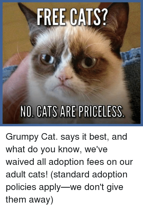Opinion Priceless adult pictures