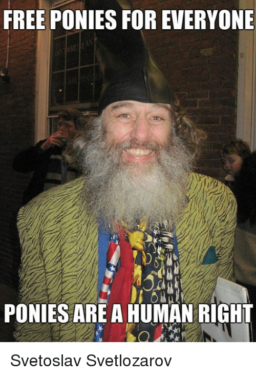 free ponies for everyone ponies are a human right svetoslav