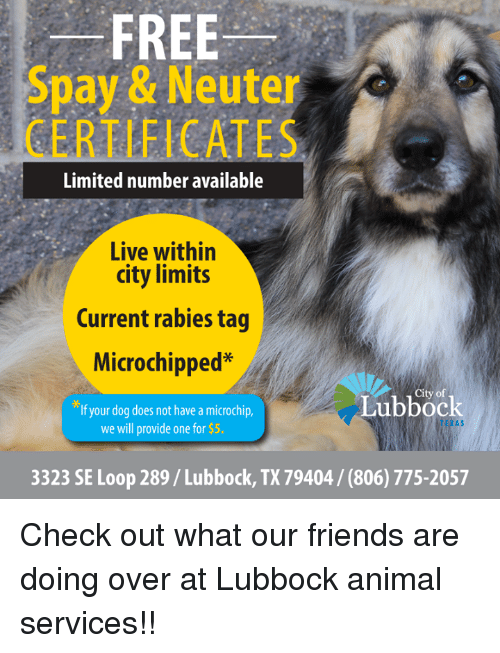Friends, Memes, and Animal: FREE  Spay & Neuter  CERTIFICATES  Limited number available  Live within  city limits  Current rabies tag  Microchipped*  If your dog does not have a microchip  City of  Lubbock  TEXAS  we will provide one for $5.  3323 SE Loop 289/Lubbock, TX 79404/ (806) 775-2057 Check out what our friends are doing over at Lubbock animal services!!