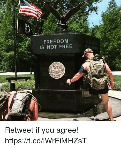 Memes, Free, and Freedom: FREEDOM  IS NOT FREE Retweet if you agree! https://t.co/lWrFiMHZsT