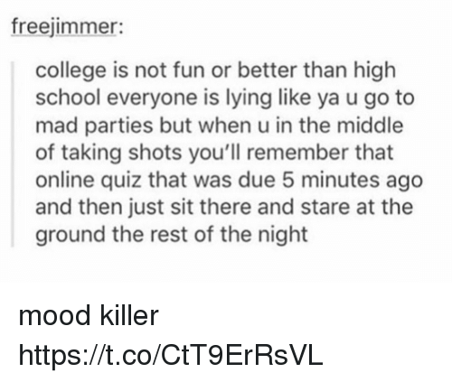 College, Mood, and School: freejimmer:  college is not fun or better than high  school everyone is lying like ya u go to  mad parties but when u in the middle  of taking shots you'll remember that  online quiz that was due 5 minutes ago  and then just sit there and stare at the  ground the rest of the night mood killer https://t.co/CtT9ErRsVL