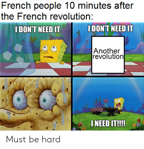 History, Revolution, and French: French people 10 minutes after  the French revolution:  IDONT NEED IT  ODON'T NEED IT  Another  revolution  ONEED IT!!!! Must be hard