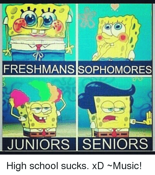What Is the Difference in Freshman Sophomore Junior and Senior