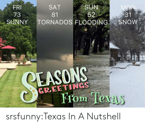 Tumblr, Blog, and Http: FRI  73  SAT  81  SUN  31  SUNNYTORNADOS FLOODING SNOW  EASONS  GREETINGS  From Te  xas srsfunny:Texas In A Nutshell