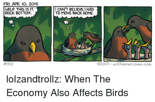 Tumblr, Birds, and Blog: FRI APR IO, 201S  WELP THIS IS IT  ROCK BOTTOM  1 CAN'T BELIEVE I HAD  TO MOVE BACK HOME.  #310  Θ2015+ willSnevercome.com lolzandtrollz:  When The Economy Also Affects Birds