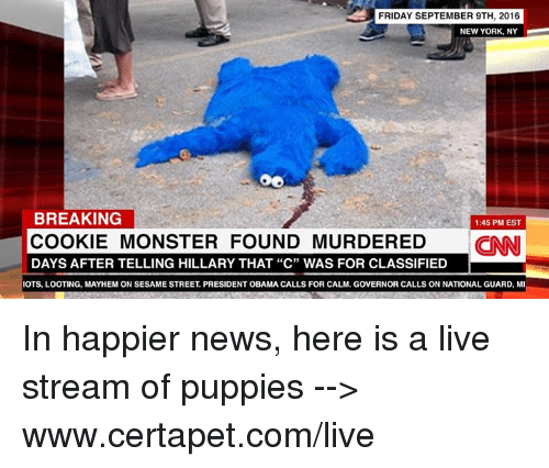 """Cookie Monster, Cookies, and Friday: FRIDAY SEPTEMBER 9TH, 2016  NEW YORK, NY  BREAKING  1:45 PM EST  COOKIE MONSTER FOUND MURDERED  CINNI  DAYS AFTER TELLING HILLARY THAT """"C"""" WAS FOR CLASSIFIED  IOTS, LOOTING, MAYHEM ON SESAME STREET PRESIDENT OBAMA CALLS FOR CALM, GOVERNOR CALLS ON NATIONAL GUARD, MI In happier news, here is a live stream of puppies --> www.certapet.com/live"""