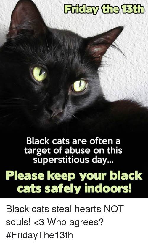 Protect the black cats