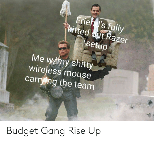 Reddit, Gang, and Budget: Friehd's fully  kitted ut Razer  \setup  Me wmy shitty  wireless mouse  carrying the team Budget Gang Rise Up