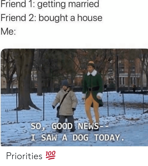 News, Saw, and Good: Friend 1: getting married  Friend 2: bought a house  Me:  SO, GOOD NEWS  I SAW A DOG TODAY Priorities 💯