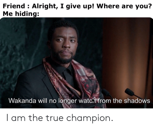 True, Dank Memes, and Alright: Friend Alright, I give up! Where are you?  Me hiding:  Wakanda will no longer watc from the shadows I am the true champion.