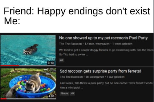 Friends, Memes, and Party: Friend: Happy endings don't exist  Me:  No one showed up to my pet raccoon's Pool Party  Tito The Raccoon 1,4 min. weergaven 1 week geleden  We tried to get a couple doggy friends to go swimming with Tito the Racc  So Tito had to swim  4K  3:13  Sad raccoon gets surprise party from ferrets!  Tito The Raccoon 3K weergaven 1 uur geleden  Last week, Tito threw a pool party, but no one came! Tito's ferret friends  him a mini pool  Nieuw 4K  4:05