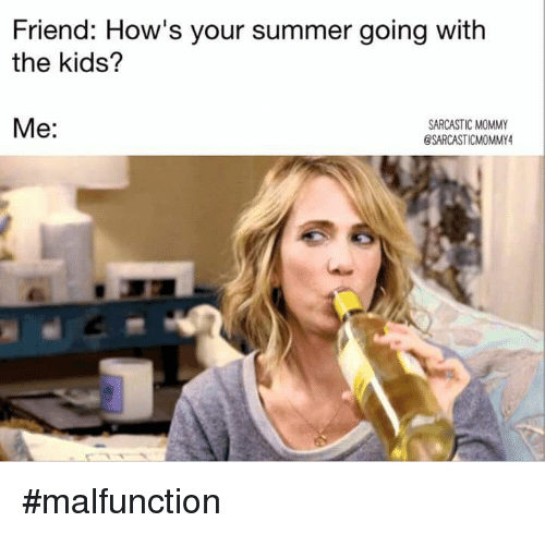 Image result for summer with kids meme