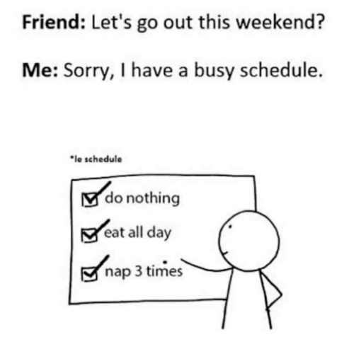 Sorry, Schedule, and Weekend: Friend: Let's go out this weekend?  Me: Sorry, I have a busy schedule.  le schedule  do nothing  eat all day  nap 3 times