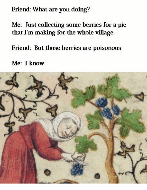 Pie, Friend, and You: Friend: What are you doing?  Me: Just collecting some berries for a pie  that I'm making for the whole village  Friend: But those berries are poisonous  Me: I know