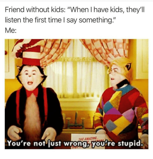 "Dad, Nerd, and Kids: Friend without kids: ""When I have kids, they'll  listen the first time I say something.""  Me:  @the.nerd.dad  NE AMAZING  You're not fust wrong,you're stupid."