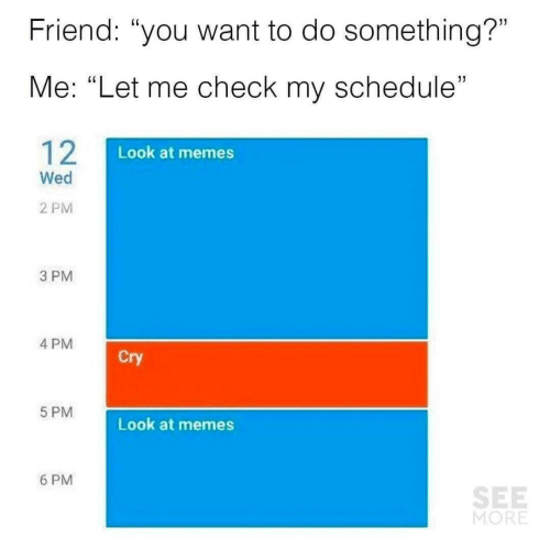 """Memes, Schedule, and Friend: Friend: """"you want to do something?""""  Me: """"Let me check my schedule""""  12  Look at memes  Wed  2 PM  3 PM  4 PM  Cry  5 PM  Look at memes  6 PM  SEE  MORE"""