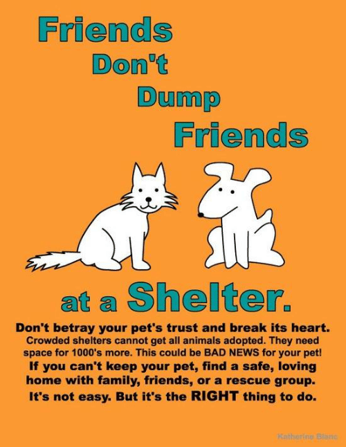Animals, Bad, and Family: Friends  Don't  Dump  Friends  at a Shelter.  Don't betray your pet's trust and break its heart.  Crowded shelters cannot get all animals adopted. They need  space for 1000's more. This could be BAD NEWS for your pet!  If you can't keep your pet, find a safe, loving  home with family, friends, or a rescue group.  It's not easy. But it's the RIGHT thing to do.