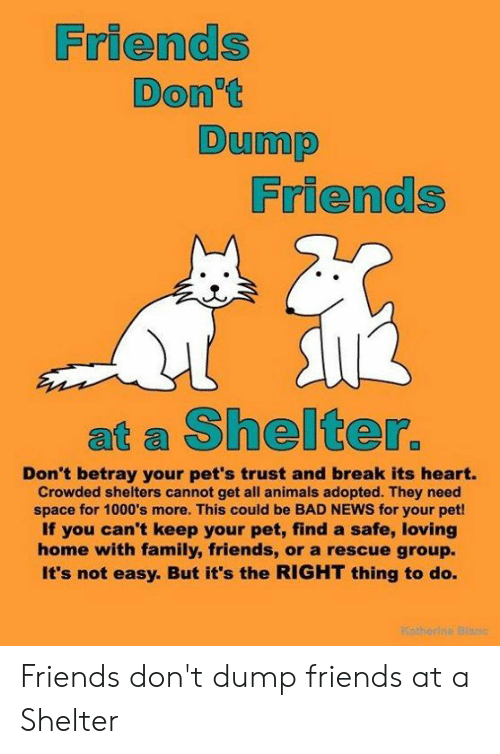Animals, Bad, and Family: Friends  Don't  Dump  Friends  at a Shelter.  Don't betray your pet's trust and break its heart.  Crowded shelters cannot get all animals adopted. They need  space for 1000's more. This could be BAD NEWS for your pet!  If you can't keep your pet, find a safe, loving  home with family, friends, or a rescue group.  It's not easy. But it's the RIGHT thing to do. Friends don't dump friends at a Shelter