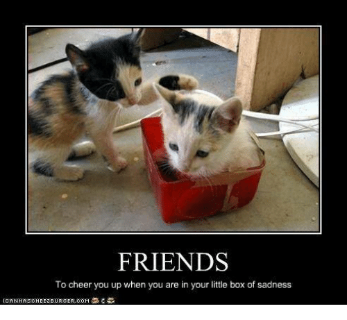 Friends To Cheer You Up When You Are In Your Little Box Of Sadness