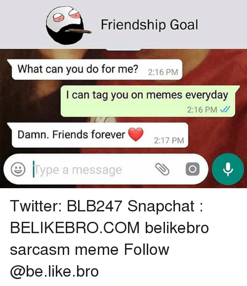 Be Like, Friends, and Meme: Friendship Goal  2:16 PMM  I can tag you on memes everyday  2:16 PM、//  Damn. Friends forever  2:17 PM  11 ype a message Twitter: BLB247 Snapchat : BELIKEBRO.COM belikebro sarcasm meme Follow @be.like.bro