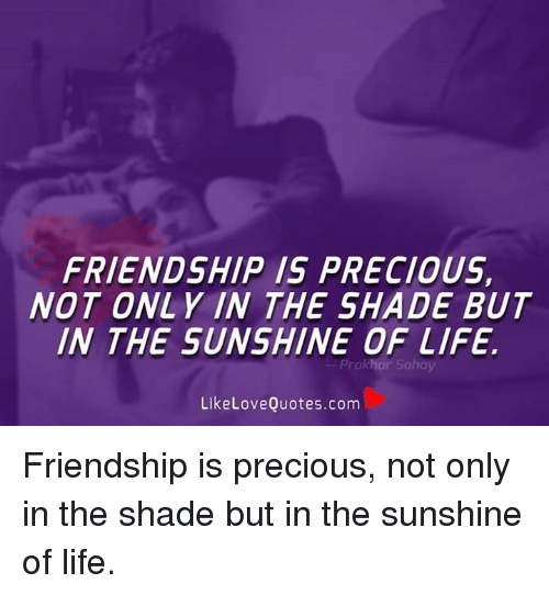 friendship the sunshine of life Grab a pal and take a listen to the best songs about friendship this version of with a little help from my friends also found new life 20 years after its.