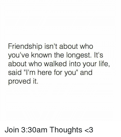 """Life, Memes, and Friendship: Friendship isn't about who  you've known the longest. It's  about who walked into your life,  said """"I'm here for you"""" and  proved it. Join 3:30am Thoughts <3"""