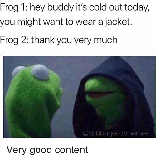 Thank You, Good, and Today: Frog 1: hey buddy it's cold out today,  you might want to wear a jacket.  Frog 2: thank you very much  Qcabbagecatmemes Very good content