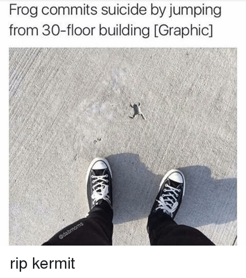 Frog Commits Suicide By Jumping From 30 Floor Building Graphicl Rip