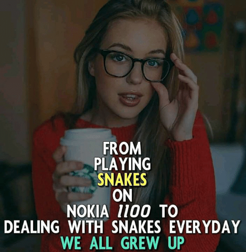 FROM PLAYING SNAKES ON NOKIA 1100 TO DEALING WITH SNAKES
