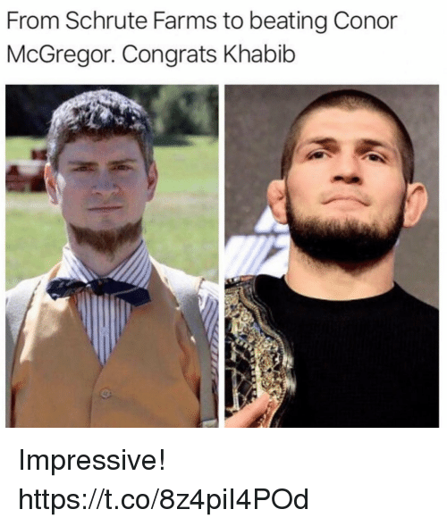 Conor McGregor, Funny, and McGregor: From Schrute Farms to beating Conor  McGregor. Congrats Khabib Impressive! https://t.co/8z4piI4POd