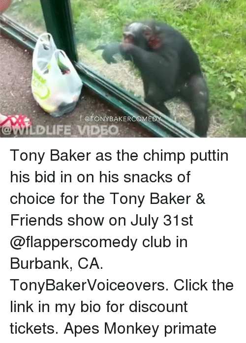 Click, Club, and Friends: ftoNYBAKER  @fONYBAKER  WILDLIFE MDEO Tony Baker as the chimp puttin his bid in on his snacks of choice for the Tony Baker & Friends show on July 31st @flapperscomedy club in Burbank, CA. TonyBakerVoiceovers. Click the link in my bio for discount tickets. Apes Monkey primate
